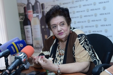 Environmentalist Karine Danielyan gave a press conference in Henaran press club - Photolure News Agency